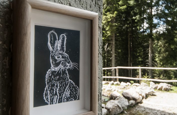 Suite Rabbit Room Image