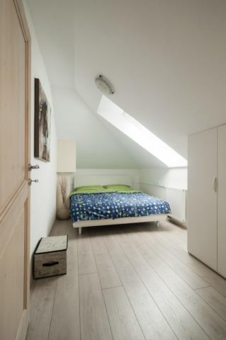 Owl - bedroom