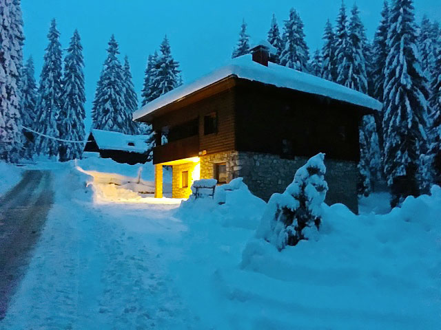 Winter Wonderland, Vila Vesna, Pokljuka
